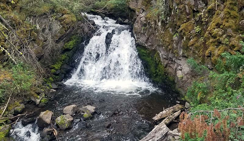 Waterfall on small stream in Yellowstone