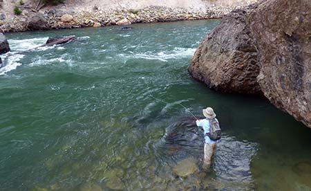 Angler fishing the Grand Canyon of the Yellowstone