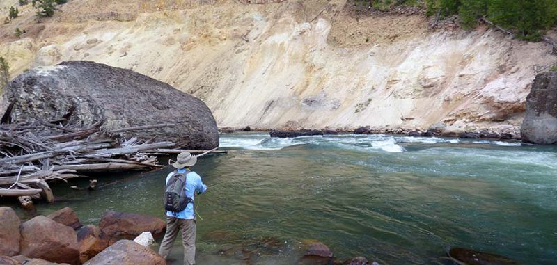 Angler fishing a streamer fly on the Yellowstone River