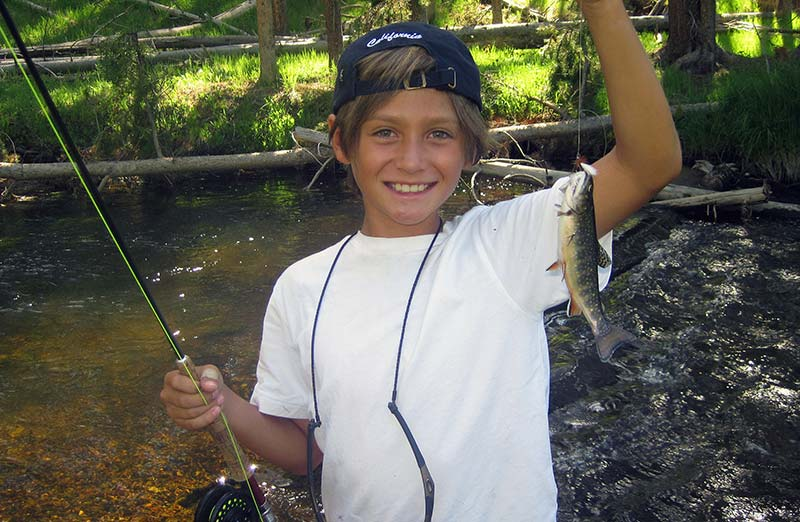 Beginner and small stream brook trout