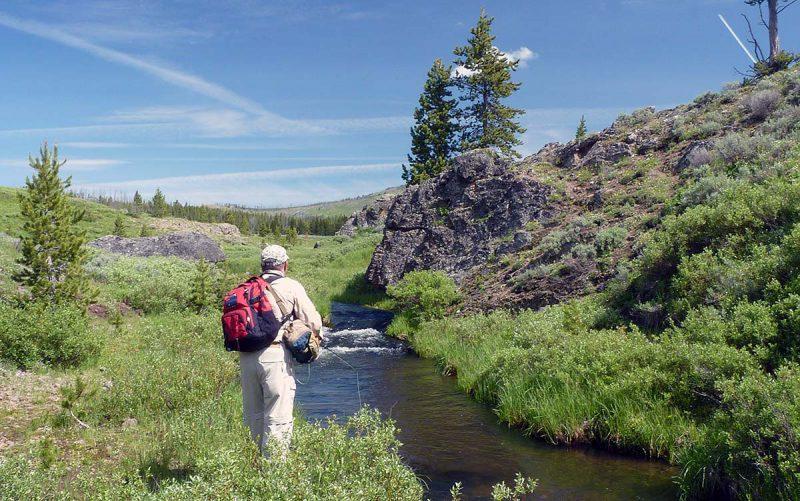 yellowstone park fishing guide small stream