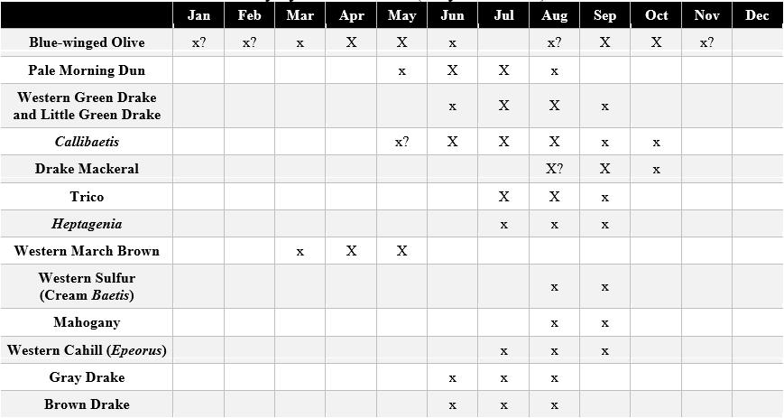 montana mayfly hatches chart