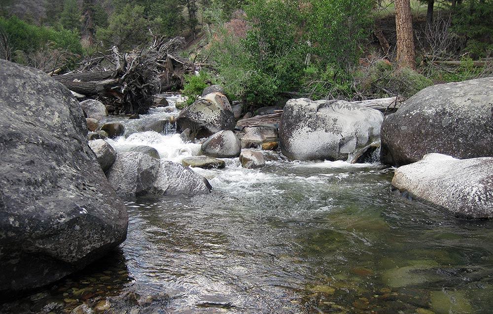 montana mountain stream
