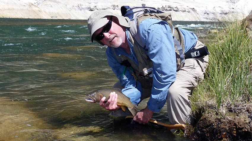 grand canyon of the yellowstone cutthroat